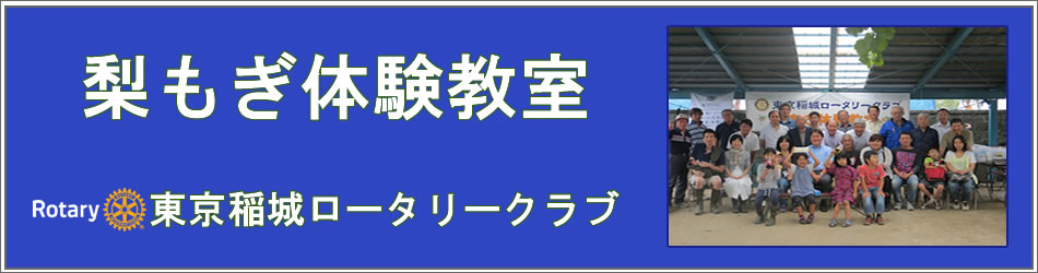 東京稲城ロータリークラブ  梨もぎ大会